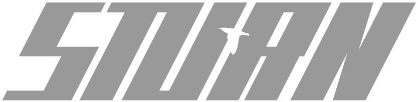 Sturn Logo